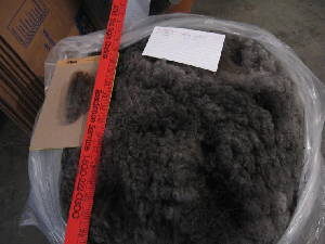 Kendra's 2010 raw fleece in bag