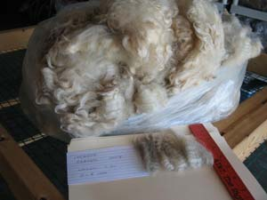 Incense's 2008 raw fleece in bag