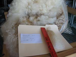 Jughead's 2010 raw fleece in bag